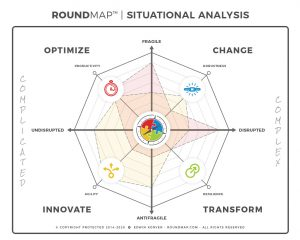 ROUNDMAP_Situational_Analysis_Copyright_Protected_2019_sample